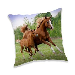 Jerry Fabrics Vankúšik Horse brown