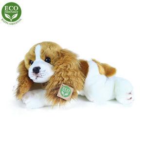 RAPPA plyšový pes Cavalier King Charles spaniel ležiaci, 30 cm, ECO...