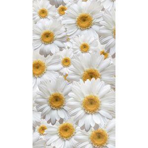 AG ART Záves Daisy, 140 x 245 cm